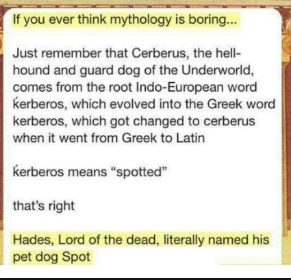 Cerberus Spot